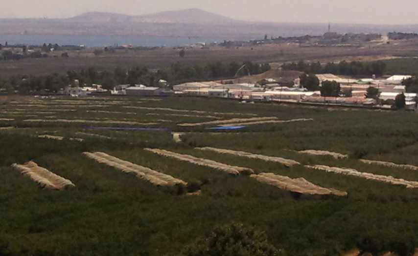 Quneitra Crossing Golan Heights view from Avital Park