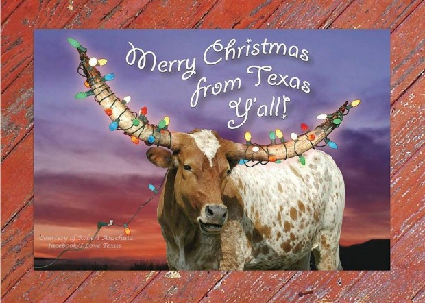 Merry Christmas from Texas | Happy Hanukkah To You