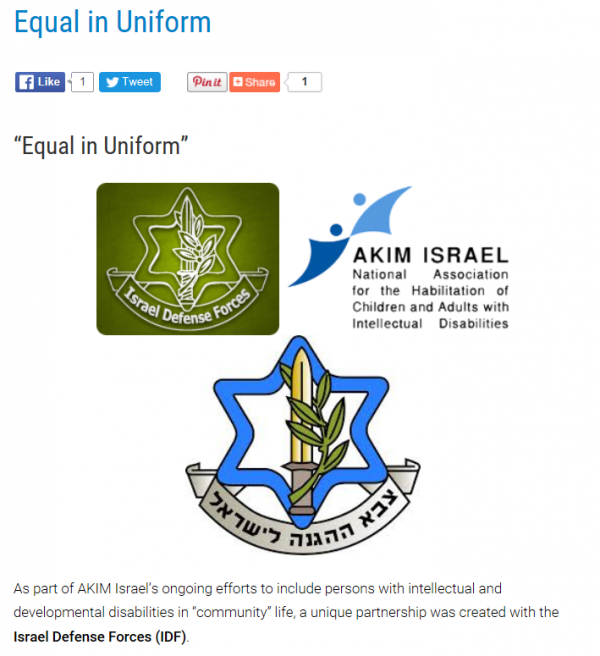 Equal in Uniform, IDF logos