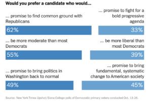 https://www.nytimes.com/2019/11/08/us/politics/democrats-poll-moderates-battleground.html